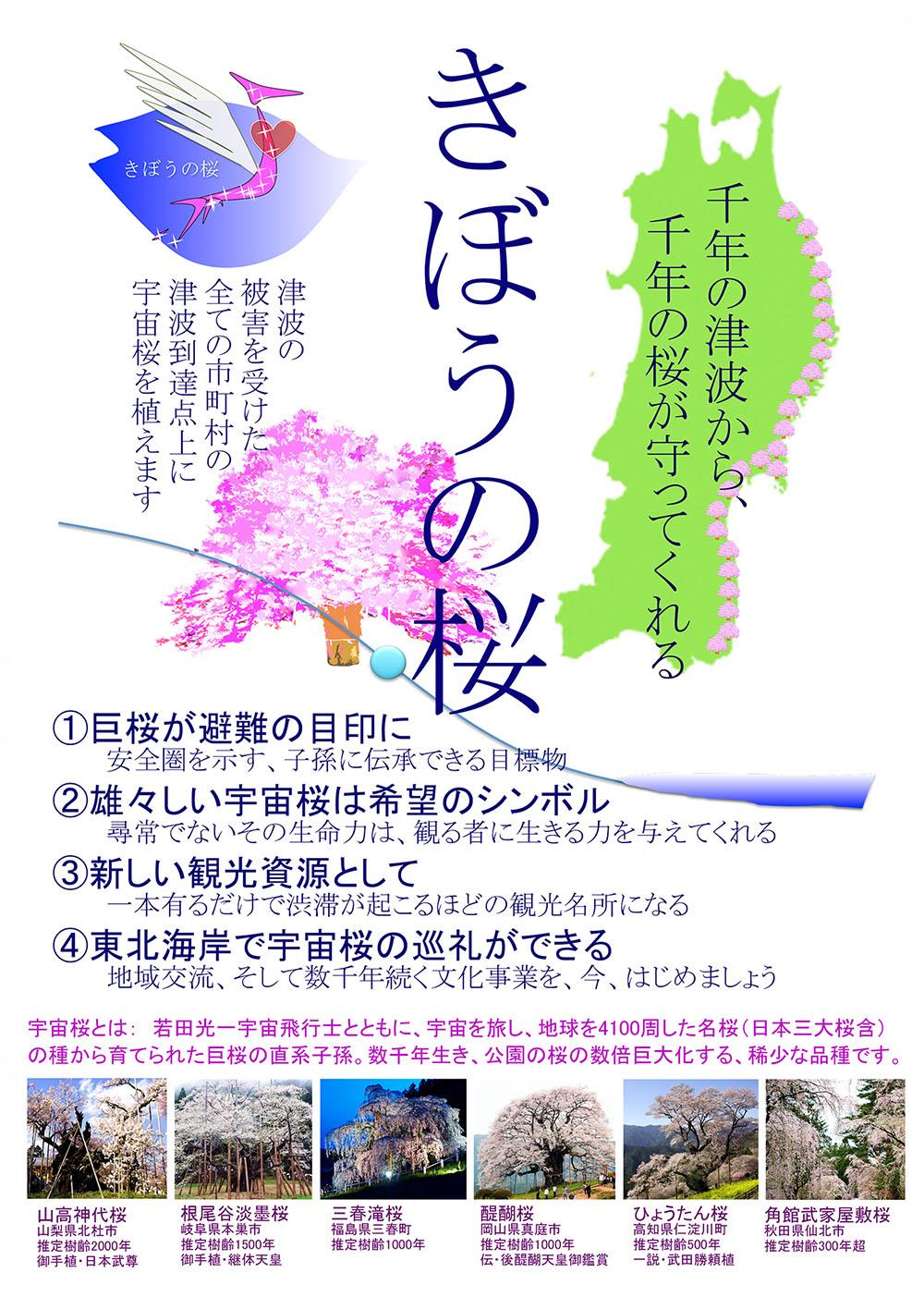 きぼうの桜パンフ